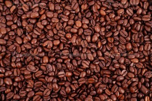 Dark roast coffee beans stock image