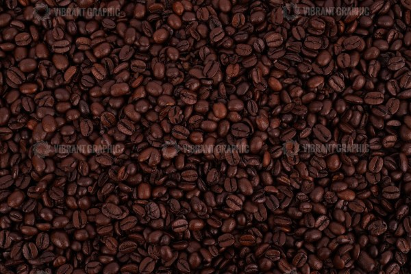 Quality coffee beans stock photo