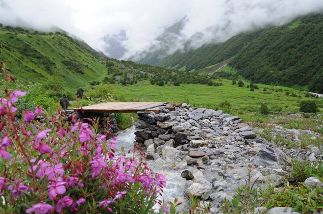 Valley of Flowers National Park 03a