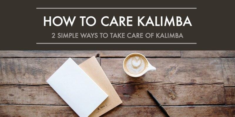 take care of kalimba poster