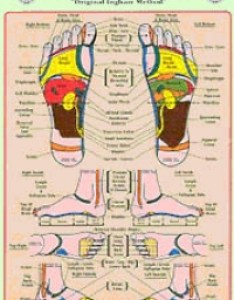 Eunice  ingham  physical therapist who worked closely with dr riley studied the concept of zone therapy and began to formulate her own foot reflex also vibrational vitality healing reflexology heart rh vibrationalvitalityolpagez