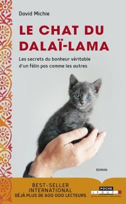 le chat du dalaï lama