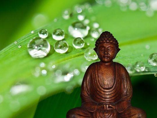 buddha-581150_640