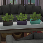 Dark Gray, Eggplant, Teal