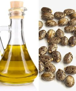 Castor Oil stimulates hair growth and has antifungal properties