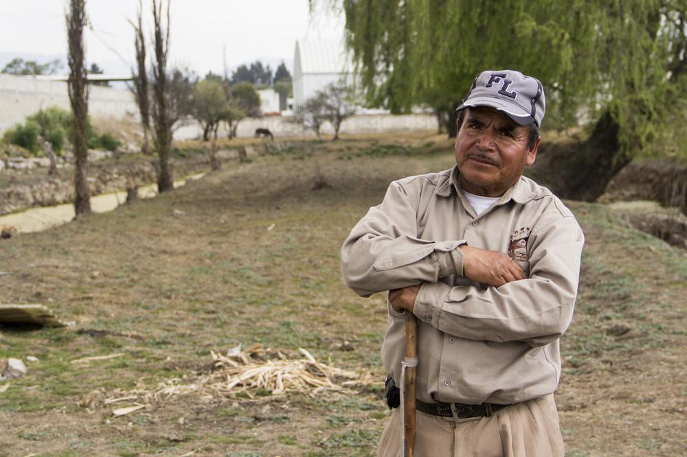 Alberto y su familia han dejado de cosechar espinaca y lechuga debido a que ya no tienen agua para regar la cosecha. Ahora sus tierras son utilizadas para la ganadería.