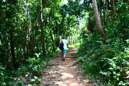 perdidos na selva hehe