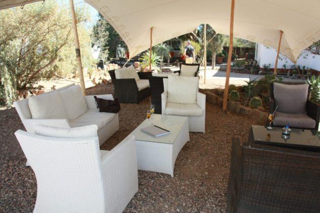Safari próximo da Cidade do Cabo 8