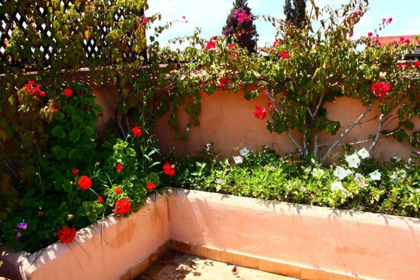 marrakech_marrocos0140