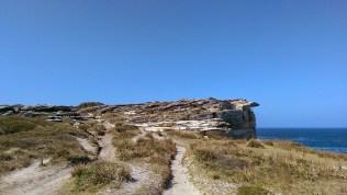 Coast Track: View