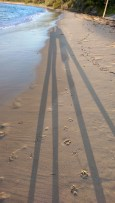 Jibbon Beach: Long Shadow