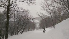 Ski Trip Jan 2015 D6: Green Forest Run