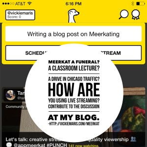 Screenshot of Meerkat app with blog title overlay