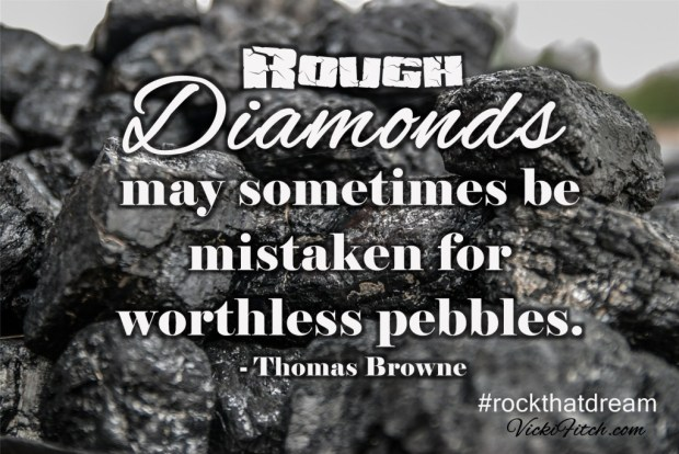 Rough Diamonds May Sometimes be Mistaken for Worthless Pebbles - Vicki Fitch