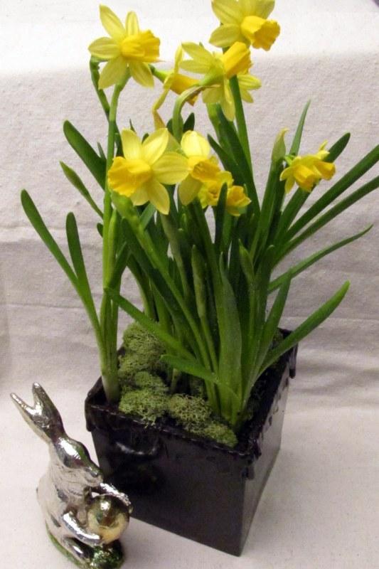 "Make a Flower Centerpiece in a ""Chocolate"" Vase"