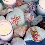 Tattoo and Decopauge Seashells