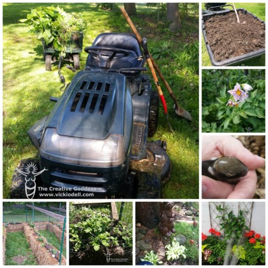garden tractor, the creative goddess, living seasonally, The Gardening Life