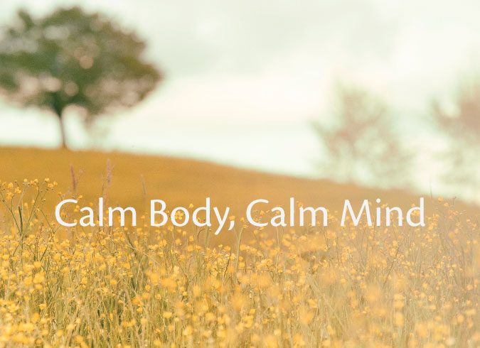 calm body calm mind small vicki tidwell palmer