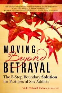 partner sex addict moving beyond betrayal