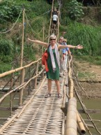 Bamboo footbridge