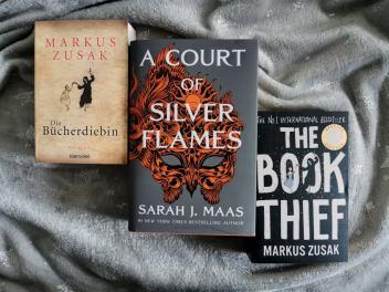 Крадецът на книги, Двор от сребърни пламъци