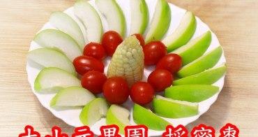 高雄親子景點︱大山元果園:自己採甜姆姆蜜棗,吃蜜棗;年年好,附鄰近景點和景觀餐廳資訊