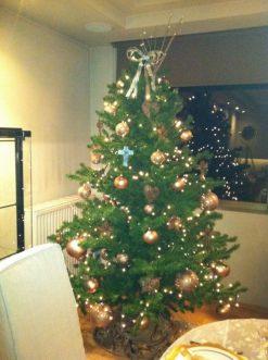 Christmass Deco05