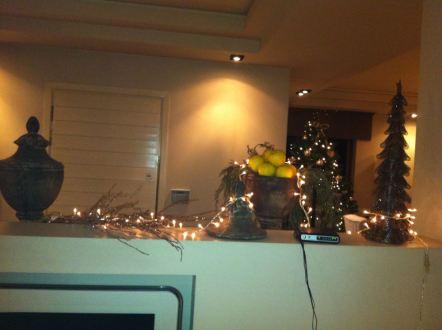Christmass Deco10