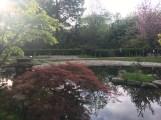 The Kyoto Garden