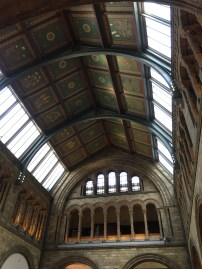 The ceiling in the food hall