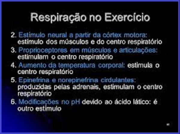 Respiração adequada combate o estresse, cansaço, fadiga, falta de concentração e nervosismo - Vico Massagista, São José SC, quiropraxia, massagem, massoterapia, acupuntura, reflexologia, do-in, shiatsu, ventosaterapia. Um exercício básico que precisa de certa prática (uma semana mais ou menos) é a respiração diafragmática ou abdominal, pois é a respiração que uma pessoa realiza quando não há nenhuma ameaça. Essa respiração consiste em respirar profunda e lentamente pelo nariz apenas usando exclusivamente o músculo diafragmático que se encontra bem no meio entre a região pélvica e a cintura. Você pode comprovar que está fazendo o exercício certo quando ao respirar só o seu ventre se levanta. Os ombros e o tórax, devem ficar imóveis, essas regiões que são usadas em situações de fuga ou luta quando o organismo está cheio de adrenalina, no entanto são as que usamos normalmente. Ao respirar profunda e lentamente pelo diafragma, o sistema nervoso interpreta isso como ausência de ameaça e automaticamente começa a diminuição dos hormônios do estresse. Experimente! Sua pele e seu bom humor agradecem!