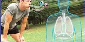 Respiração adequada combate o estresse, cansaço, fadiga, falta de concentração e nervosismo - Vico Massagista, São José SC, quiropraxia, massagem, massoterapia, acupuntura, reflexologia, do-in, shiatsu, ventosaterapia