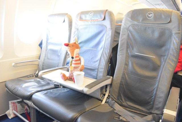 Sigi in der Lufthansa Business Class