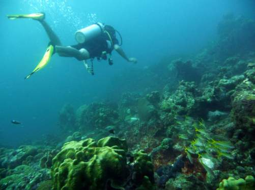 diving-at-kalki-24