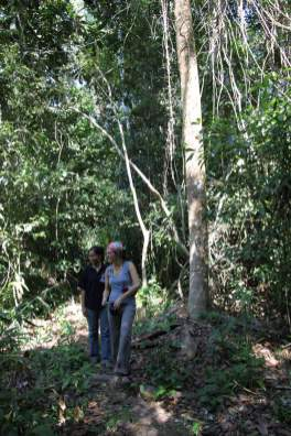 jungle-in-suriname-36