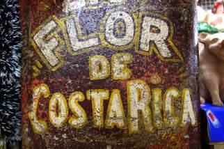 new-year-in-costa-rica-27