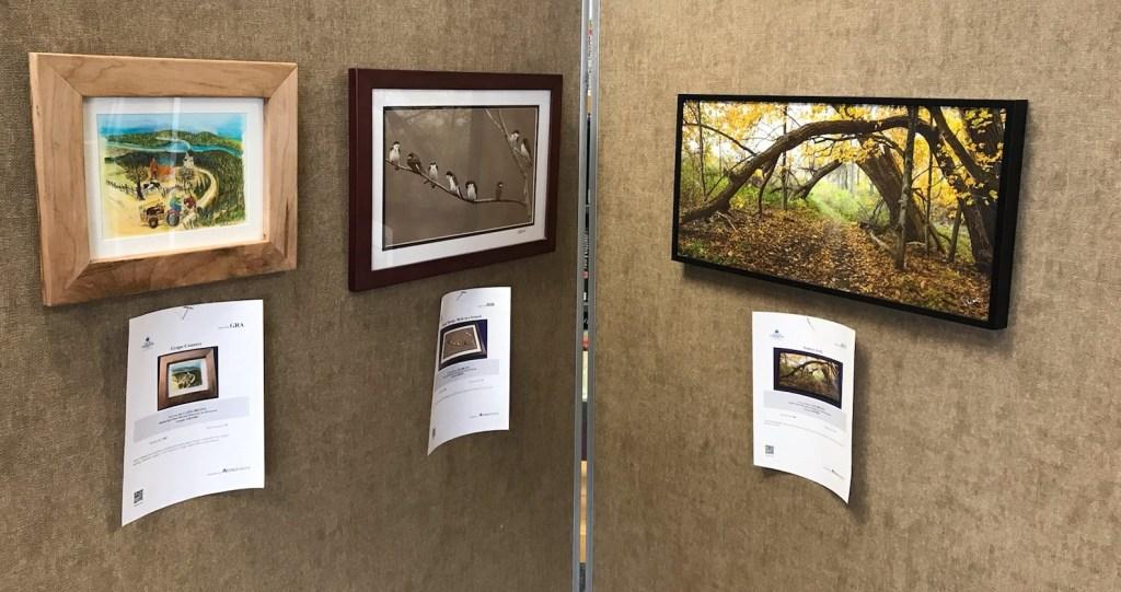 Meet-the-Artist Reception 3/11 & Silent Art Auction