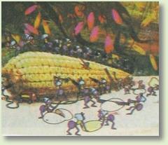 greierele si furnica