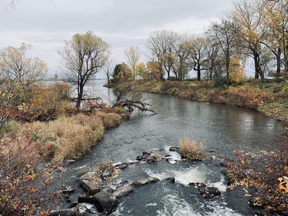 The Lachine Rapids