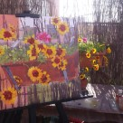 Open Air Painting 2017