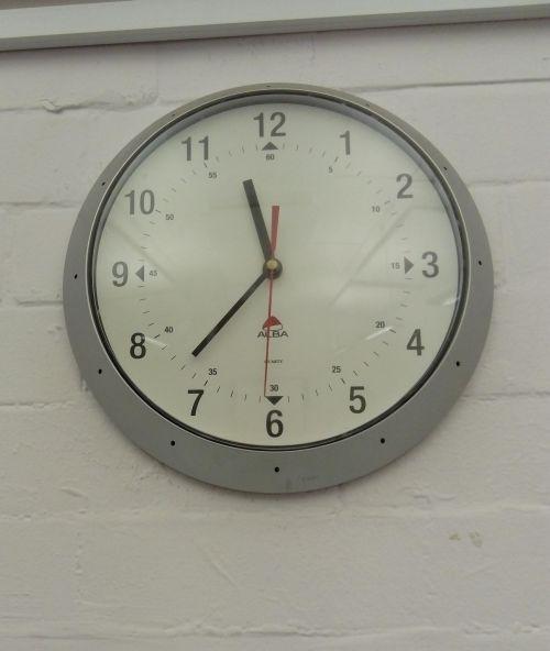 clockshycreatures