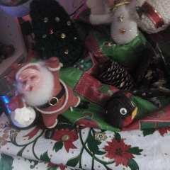 Sloshed Santa for Social Distance Warriors