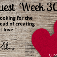 Making Space for Love #QuoteQuest #FreeRead #KOTW
