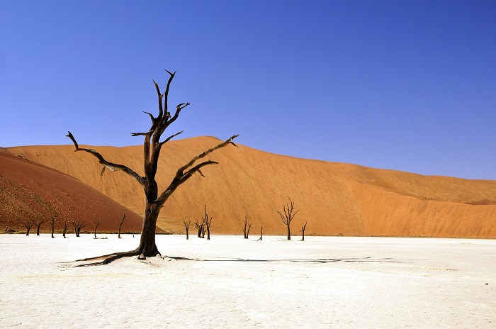 Another cloudless and temperate winter's day in Namibia. (Image via Deal's Holidays)