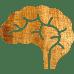 brain-xxl