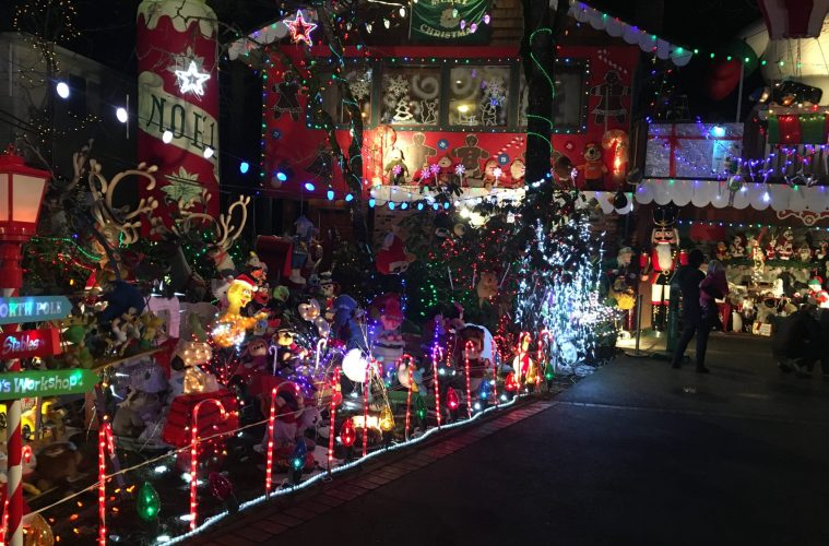 tuxedo drive christmas lights a must see this year
