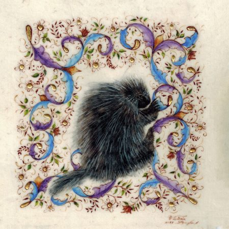 Right Side Up, illuminated porcupine by Victoria Lansford