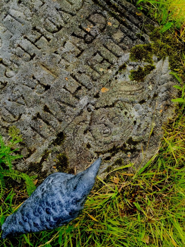 Nevermore on a grave from 1676 in the cemetery at þingvallakirkja (church) in Þingvellir National Park in Iceland.