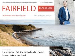 victoria neighbourhood sales 2019
