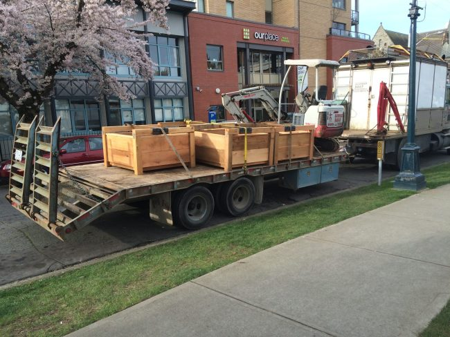 The sturdy planter boxes, built by Ian Welsh from donated materials, arrive on site.